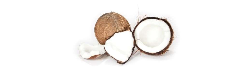 coconut image